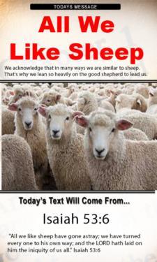 9807 - All We Like Sheep