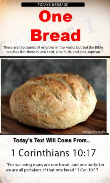 9704 - One Bread